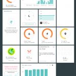 Fitbit Online Dashboard